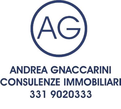 Andrea Gnaccarini - trasp
