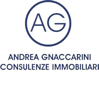 Andrea-Gnaccarini-trasp_NT